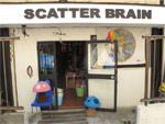 SCATTER BRAIN (東京)