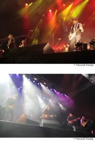 FUJI ROCK FESTIVAL '11 / WILCO