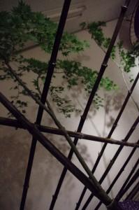 BAMBOO PROJECT JAPAN ~竹のある生活~