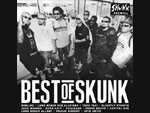 V.A. / BEST of SKUNK