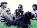 PET de 輪ん!(ペットでワン) 【Vol.2 後編】HIROMITSU (THE CHERRY COKE$/RADIOTS)&DEE(ディー)
