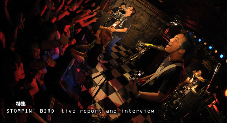 -特集- STOMPIN' BIRD live report and interview