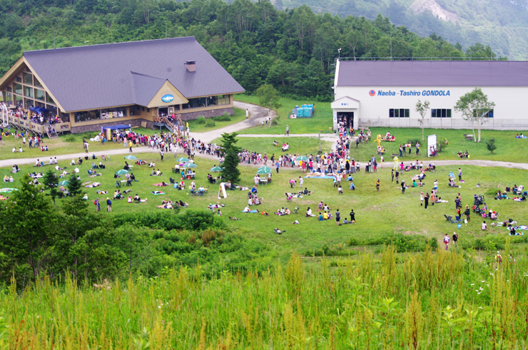 DAY DREAMING and SILENT BREEZE@FUJI ROCK FESTIVAL '12 REPORT