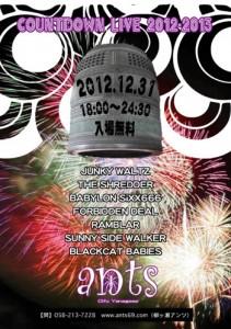 Countdown Live 2012-2013 - at 岐阜・柳が瀬ants 2012/12/31(Mon)