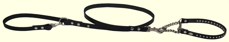 LAF leather lead & coller