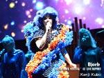 Bjork @ FUJI ROCK FESTIVAL '13 LIVE REPORT / A-FILES オルタナティヴ ストリートカルチャー ウェブマガジン