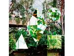 Clean Bandit – New Album 『New Eyes』 Release