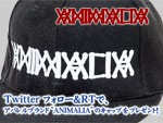 ANIMALIA – Pick up Items /Twitterフォロー&RTでANIMALIAキャッププレゼント!