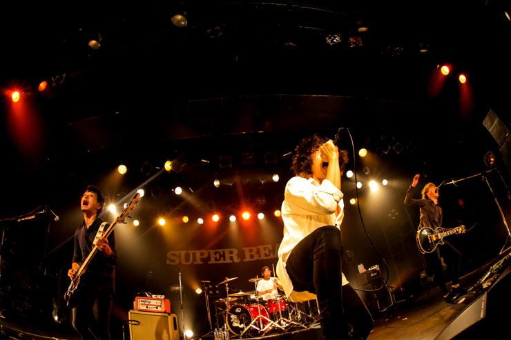 SUPER BEAVER 「都会のラクダ」 Tour 2015 ~秋味、サシ飲み~
