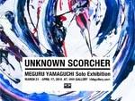 """Meguru Yamaguchi """"UNKNOWN SCORCHER"""" 2016年3月21日(月・祝)〜 2016年4月17日(日) at HHH gallery"""