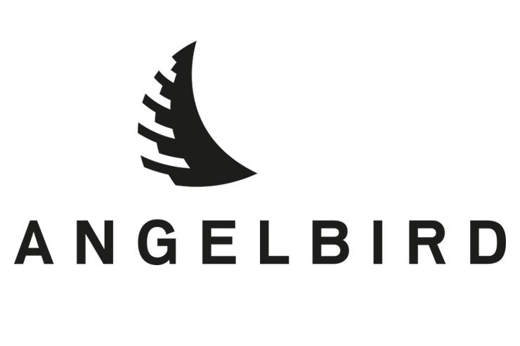 オーストリアに拠点を置くコンピュータ周辺機器の開発メーカー【Angelbird】のSSDデバイス5種の国内販売がスタート。