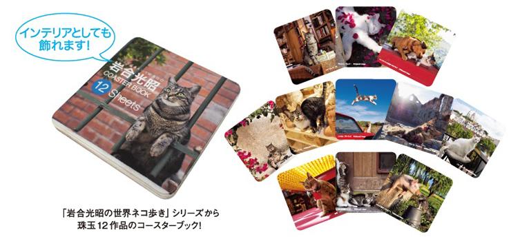 岩合光昭(Mitsuaki Iwago) - ねこの写真展がゴールデンウィークから6月上旬にかけて全国で7つの写真展を合計15会場で開催!