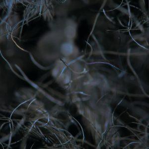srnkskk - デジタルEP 『Fruit』 Release