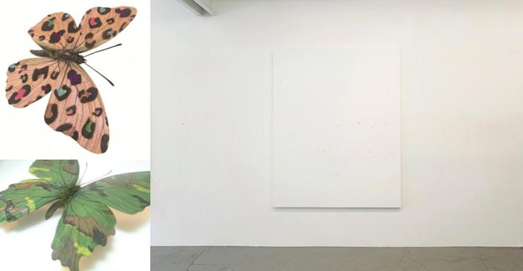 大野修平、 水口鉄人による2人展『A Butterfly's Dream』2016年8月13日(土)~9月25日(日)at gallery COEXIST-TOKYO