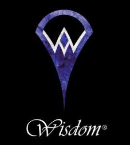 山野楽器が新ブランド「Wisdom」をスタート。初のオリジナル純国産ギターを発売。