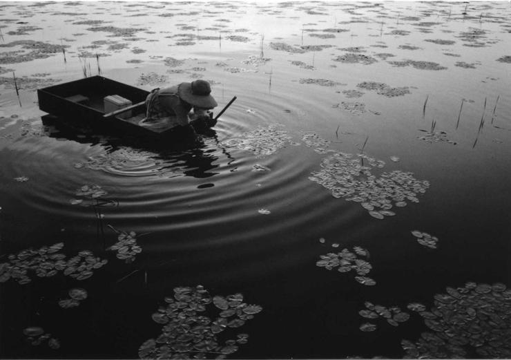 公文健太郎 写真展 『耕す人』 2017年1月5日(木)~1月18日(水)at アイデムフォトギャラリー[シリウス]