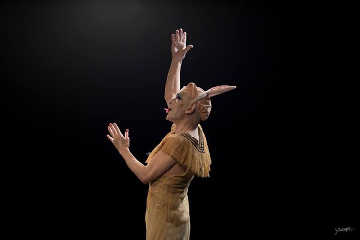 『札幌国際舞踏フェスティバル2017』2017年1月31日(火)~2月12日(日)at 北海道札幌市各所