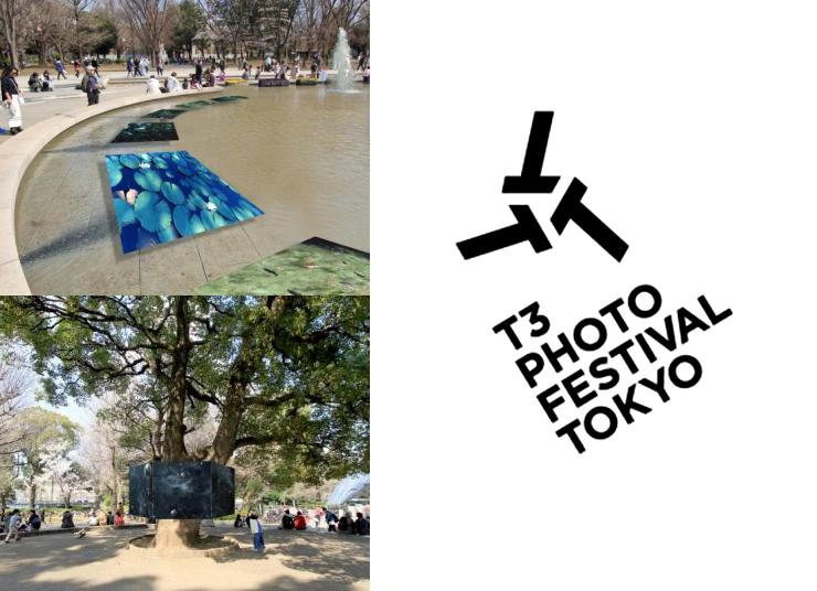 『T3 PHOTO FESTIVAL TOKYO』2017年5月19日(金)~28日(日)at 上野公園、東京藝術大学、上野桜木周辺、市田 邸