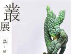 『叢 – Qusamura  展 ~蠢く植物の世界~』2017年6月10日(土)~6月26日(月)at パルコミュージアム(池袋パルコ 本館 7F)