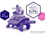 ヨコハマトリエンナーレ2017「島と星座とガラパゴス」追加参加アーティスト13名発表。