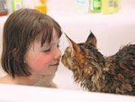 自閉症の少女と子猫の物語『小さなモネ -アイリス・グレース- :自閉症の少女と子猫の奇跡』日本版刊行。