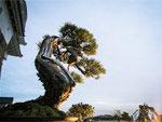 「姫路城×彩時記」秋 -color of the season- 2017年11月10日(金)~26日(日)at 姫路城西の丸庭園(屋外)及び西の丸百間廊下(屋内)