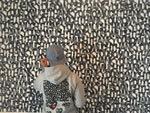 "『baanaiインスタレーション展 ""ROOM FOR ART EXPERIMENT""』2017年12月16日(土)~2018年1月14日(日)at 代官山 SISON GALLERy"