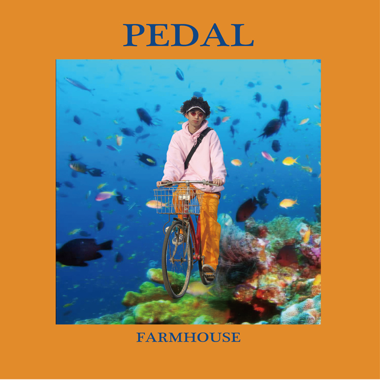 FARMHOUSE(SUSHIBOYS)-  SOLO EP 『PEDAL』デジタル配信開始。
