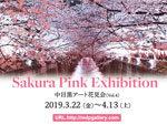 中目黒アート花見会Vol.4『Sakura Pink』展 – 2019年3月22日(金)~4月13日(土) at MDP GALLERY