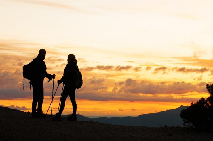 サンライズトレッキング 越前岳登山道~越前岳頂上(往復4時間)