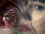 チョークアーティストMoeco 個展『秘花』-HIBANA- 2019年6月21日(金)~7月6日(土) at MDP GALLERY