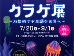 『クラゲ展 ~幻想的で不思議な世界へ~』2019年7月20日(土)~9月1日(日) at 越前がにミュージアム1階特設会場