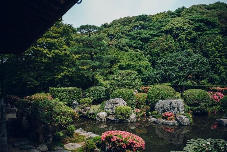 清水寺 成就院 庭園