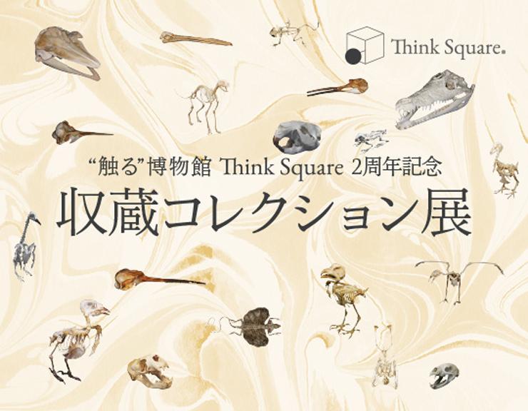 収蔵コレクション展 ~標本で読み解く、生き物の進化の旅~