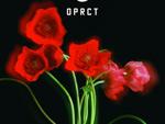 『OPRCT』2020年3月28日(土)at 代々木上原 OPRCT