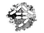 インディペンデントなアーティストによる合同展示『今』展[第二弾]2020年6月26日(金)〜28日(日)at 渋谷ヒカリエ 8/ CUBE 1, 2, 3