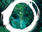 『MIND TRAIL 奥大和 心のなかの美術館』2020年10月3日(土)~11月15日(日) at 奈良県 吉野町、天川村、曽爾村
