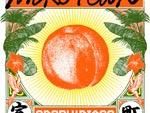 踊る!ディスコ室町 – New Album『MUROTOWN』Release