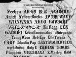 『NAMIMONOGATARI2021』2021年8月28日(土)  29日(日) at AICHI SKY EXPO(愛知県国際展示場)野外多目的広場