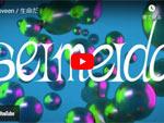 Ooveen『生命だ』MUSIC VIDEO